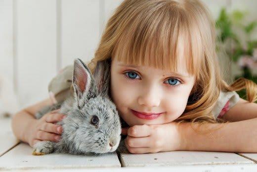 ウサギと子供