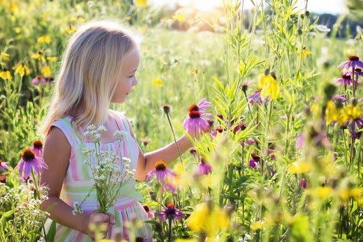 花を愛でる少女