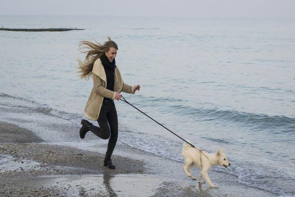 犬を散歩させている女性