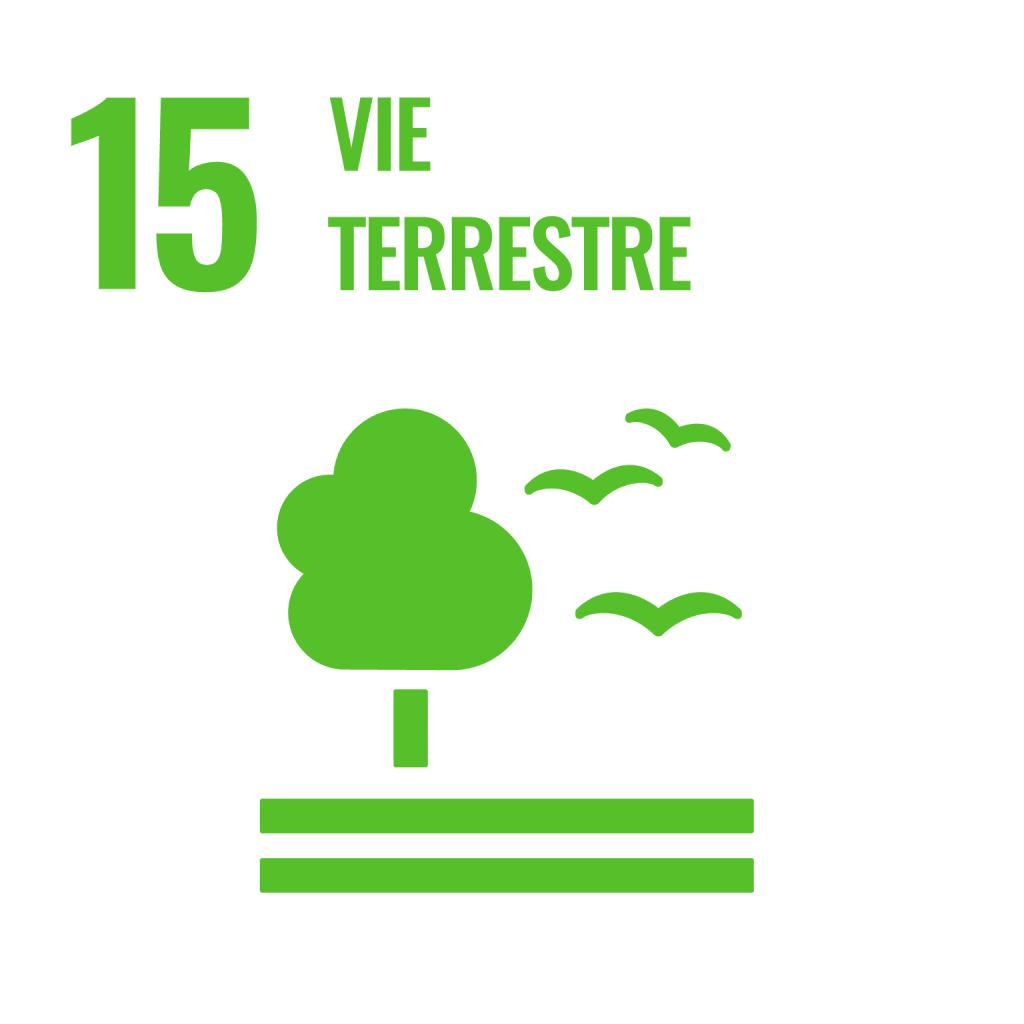 logo de cible des ODD