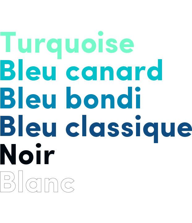 nom des couleurs composant la palette des couleurs de Brainees