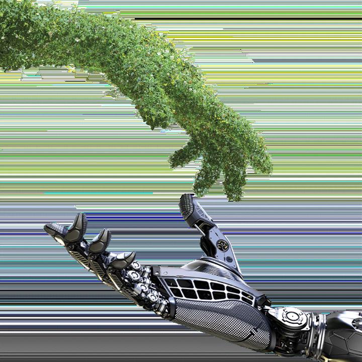 un bras couvert de verdure tend la main à un bras humain sur le modèle du tableau de Mchel-Ange : La création d'Adam