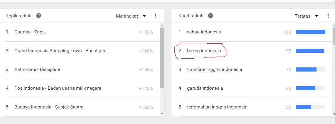 Mencengangkan!! Ini Yang Banyak Di Cari Para Pengguna Internet Indonesia