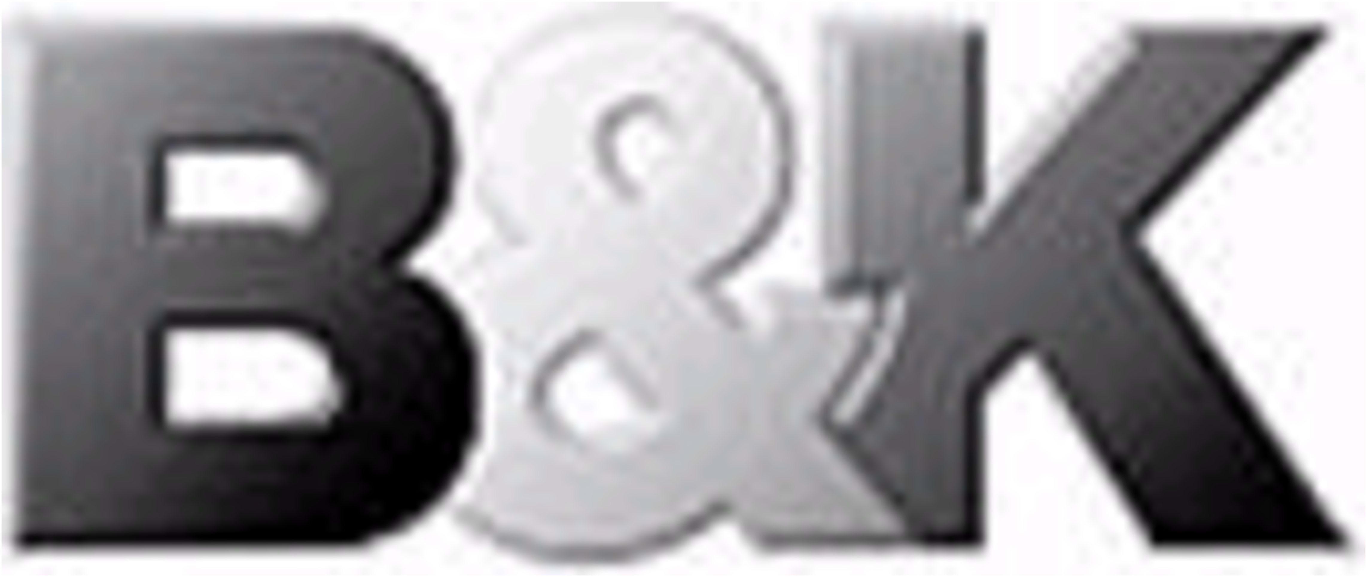logo B&K GmbH Winsen/Luhe BMW MINI