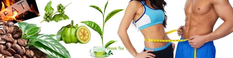 Our 2 Years Market Monitoring Report Says That 90% People Are Using 4 Ingredients. And Basically, This 4 Ingredient Is Natural And Can Use Everyone. (Men/Women) Caffeine Garcinia Cambogia Green Coffee Extract Green Tea Extract