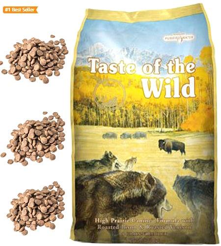 best dog food - Dry