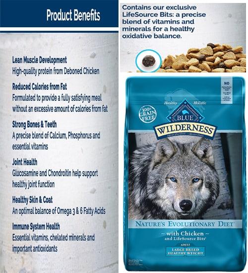 healthy dog food - healthiest dog foods