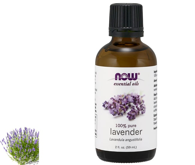 now lavender oil