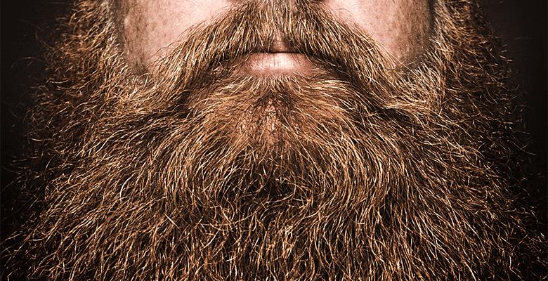 Bushy Viking Beard