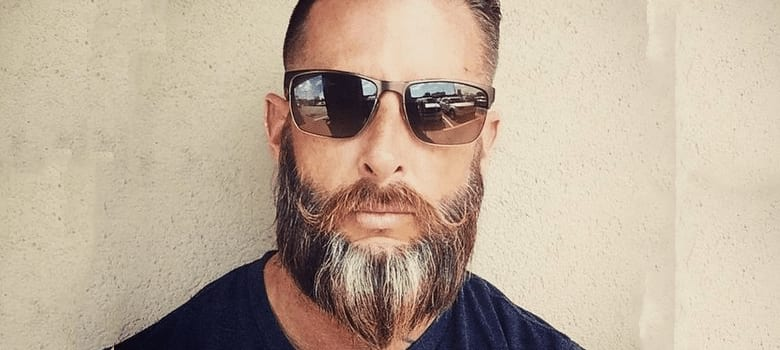 The Tapered Pointed Viking Beard