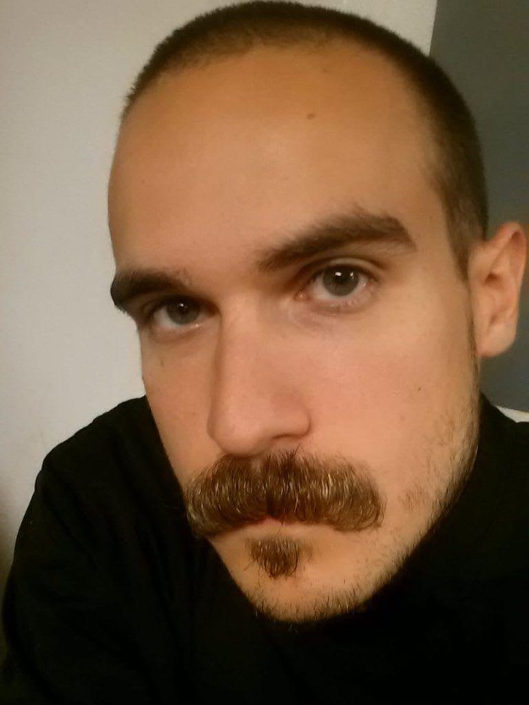 Short Stubble Beard with Walrus Mustache