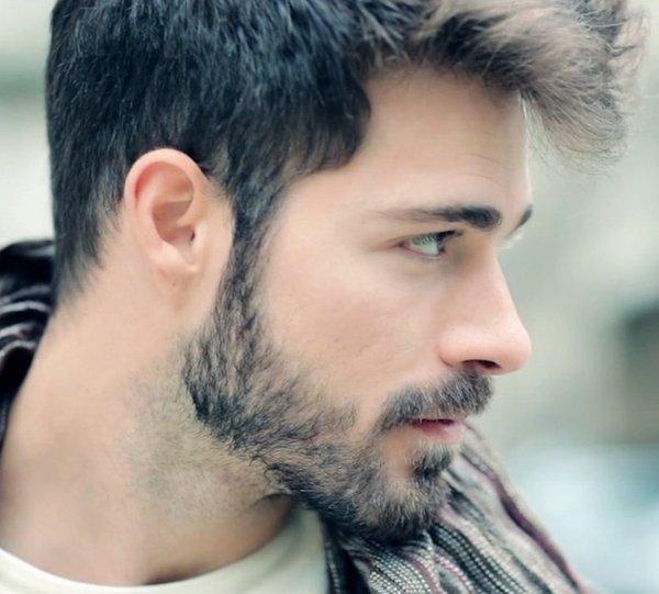stubble beard