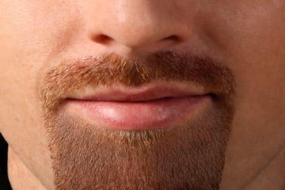 quick beard
