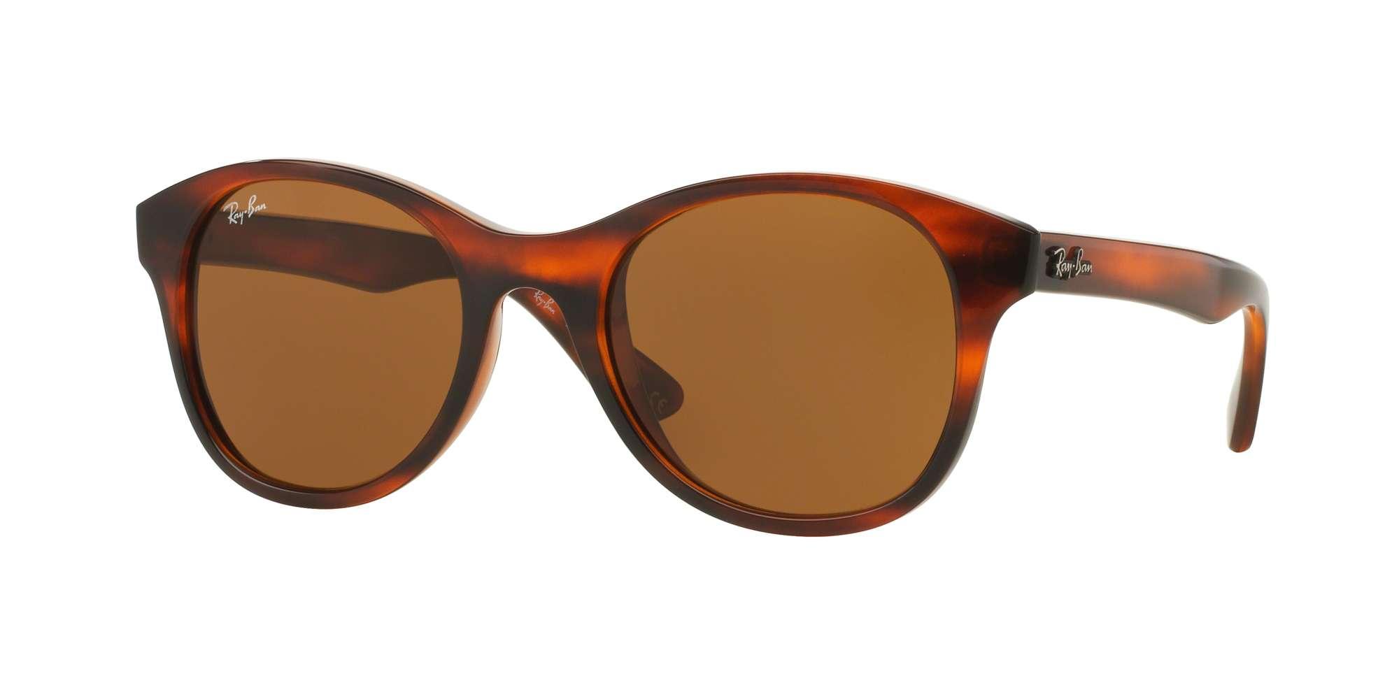 Shiny Striped Havana / Dark Brown lenses