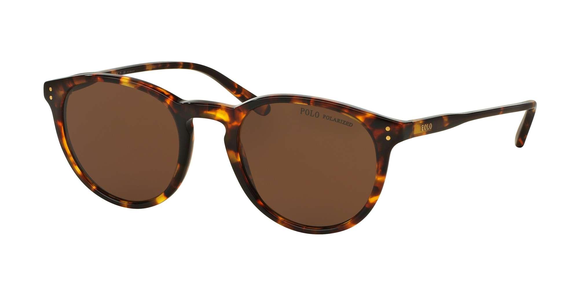 SHINY ANTIQUE HAVANA / POLAR BROWN lenses