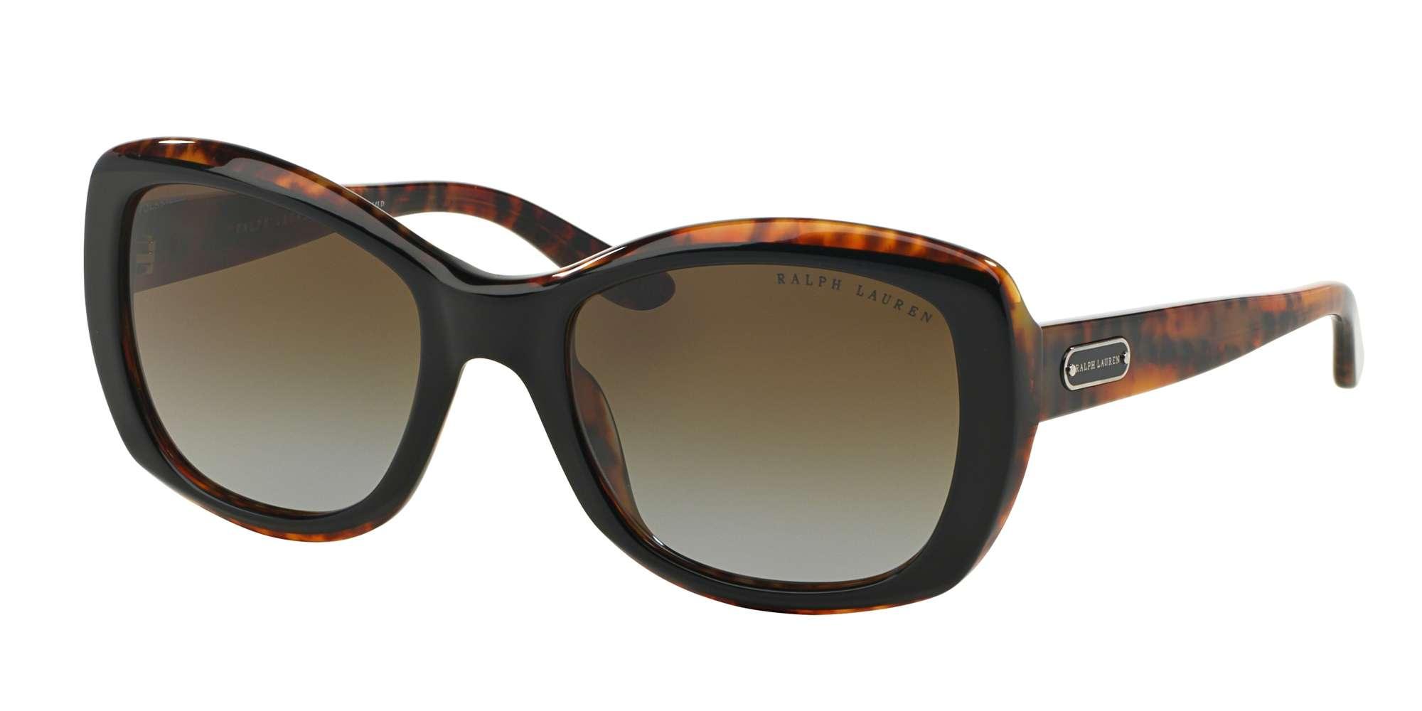 TOP BLACK/HAVANA / POLAR BROWN GRADIENT lenses
