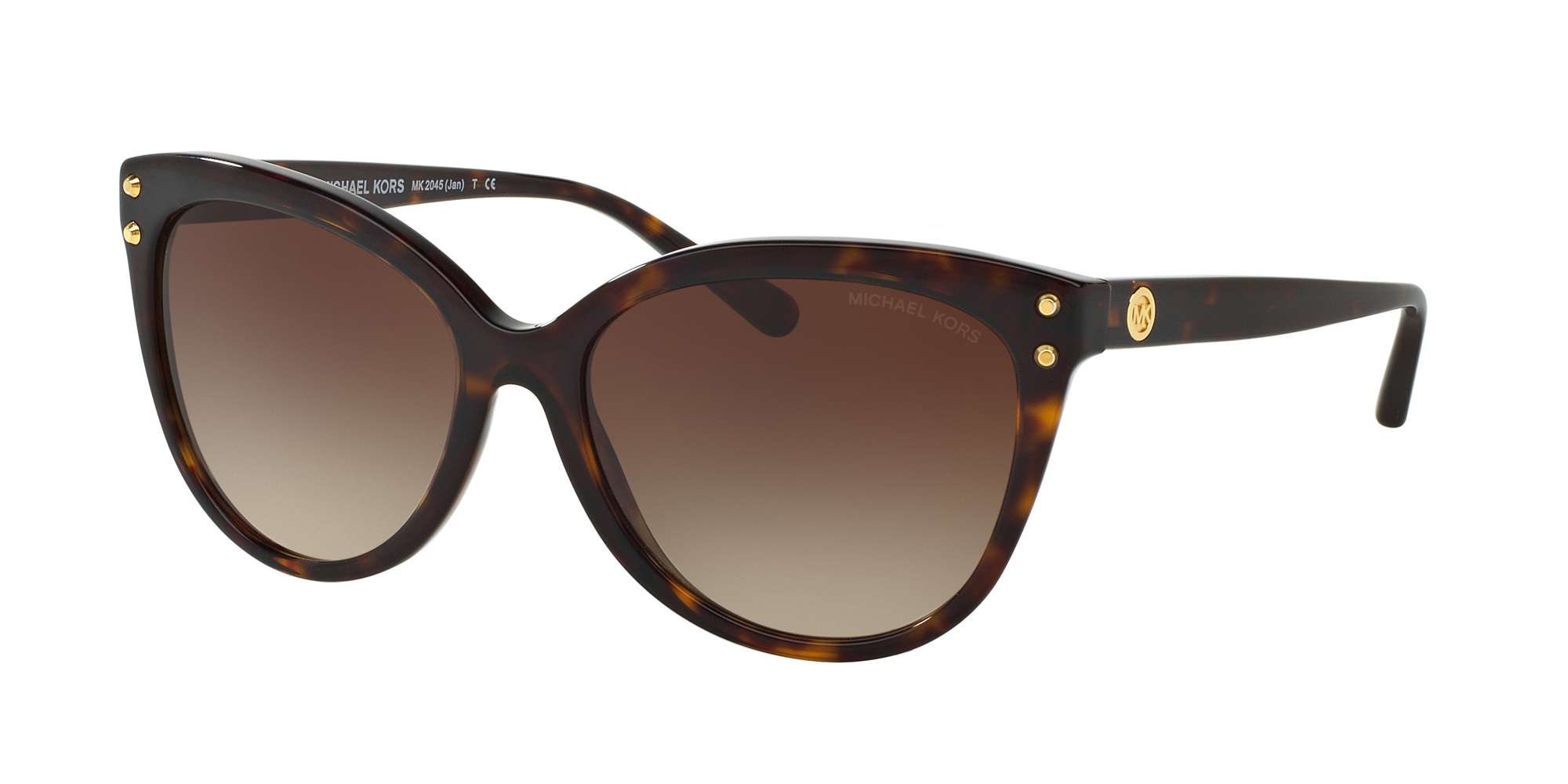 DARK TORTOISE ACETATE / BROWN GRADIENT lenses