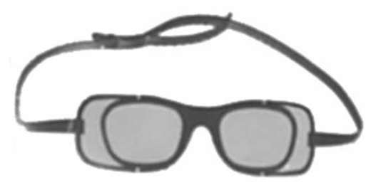 Criss Optical Mag-1 Spectacle