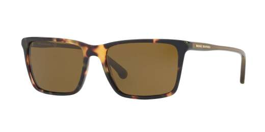RETRO TORTOISE/OLIVE TRA / OLIVE SOLID lenses