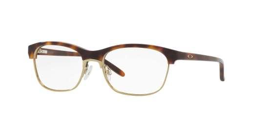 TORTOISE / CLEAR lenses