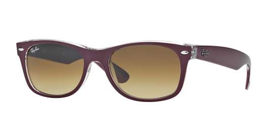 Top Matte Bordo' On Trasp / BROWN GRADIENT lenses