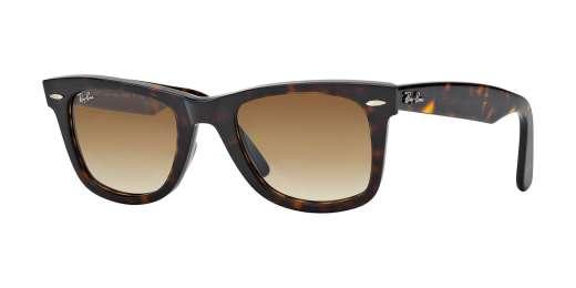 TORTOISE / CRYSTAL BROWN GRADIENT lenses