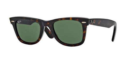 TORTOISE / CRYSTAL BROWN POLARIZED lenses