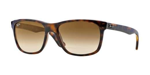 LIGHT HAVANA / CRYSTAL BROWN GRADIENT lenses