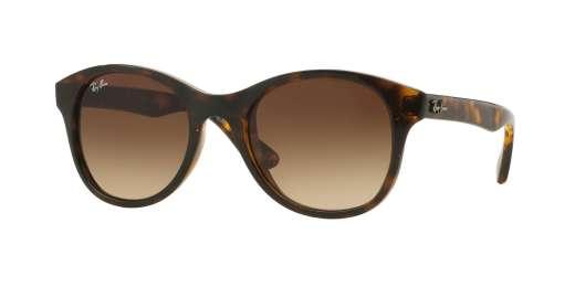 SHINY HAVANA / BROWN GRADIENT lenses
