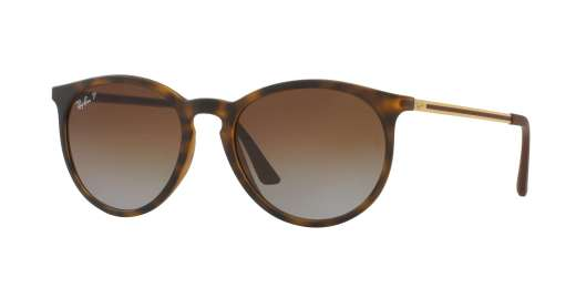 RUBBER HAVANA / POLAR GRADIENT BROWN lenses