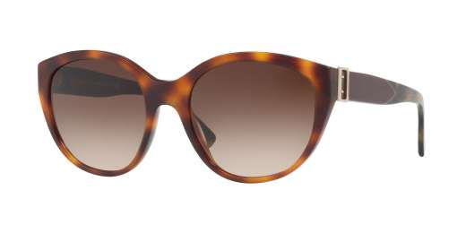 LIGHT HAVANA / BROWN GRADIENT lenses