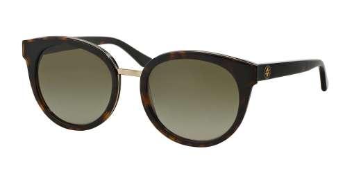 TORTOISE / BROWN GRADIENT lenses