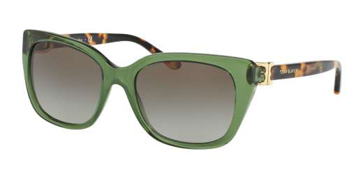 BOTTLE GREEN/SPOTTY TORT / OLIVE GRADIENT lenses