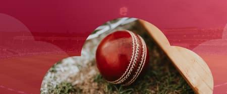 2019 Cricket World Cup Semi-Final Predictions