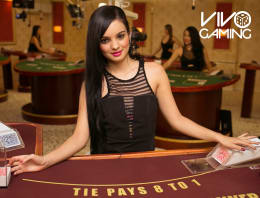 Play VIP Baccarat in our live Dealer Bitcoin Casino