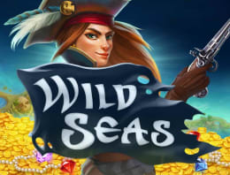 Play Wild Seas in our Bitcoin Casino