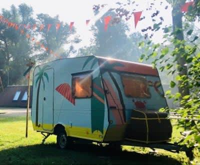 Pop-up camping 2021 - Stichting WIEL