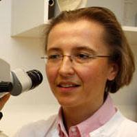Prof. Dr. med. Anke Lesinski-Schiedat