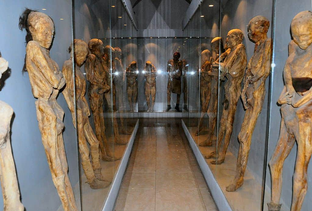 Museum of Mummies