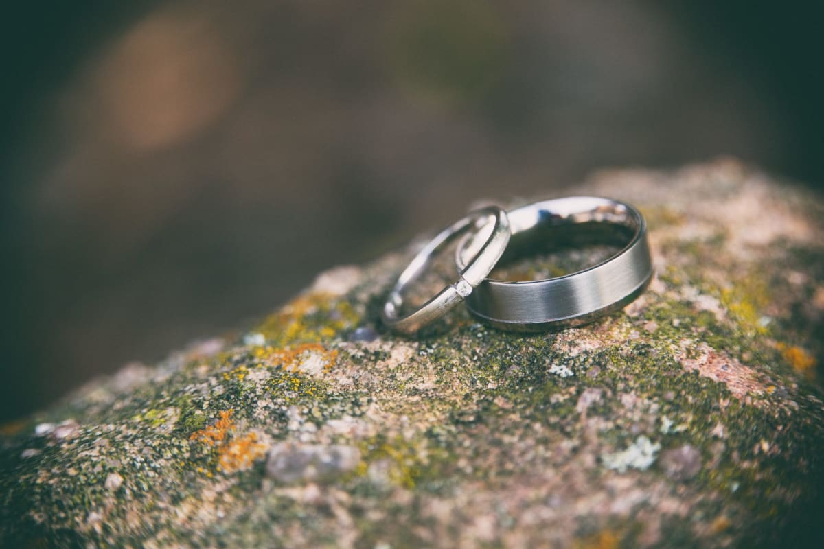 Wedding rings on a log