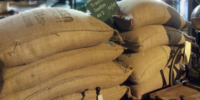 Nachhaltiger Kaffeehandel wird immer wichtiger