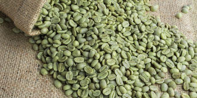 Diät-Trend: Grüne Kaffeebohnen