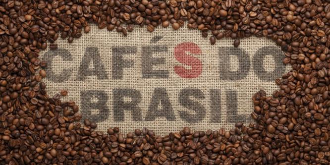 Klimawandel bedroht Kaffeeanbau in Brasilien