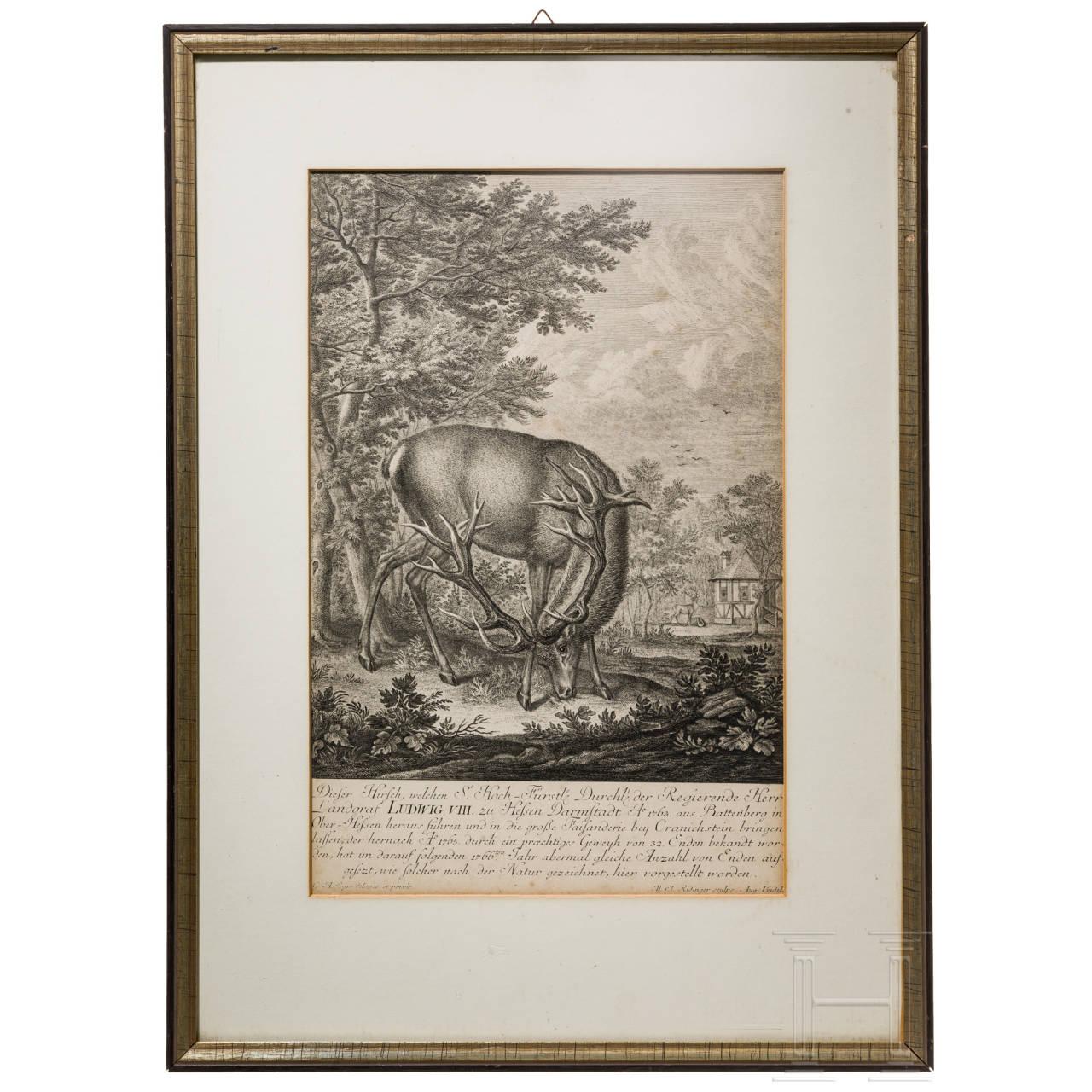 Johann Elias Ridinger (1698 - 1767), jagdlicher Kupferstich, undatiert
