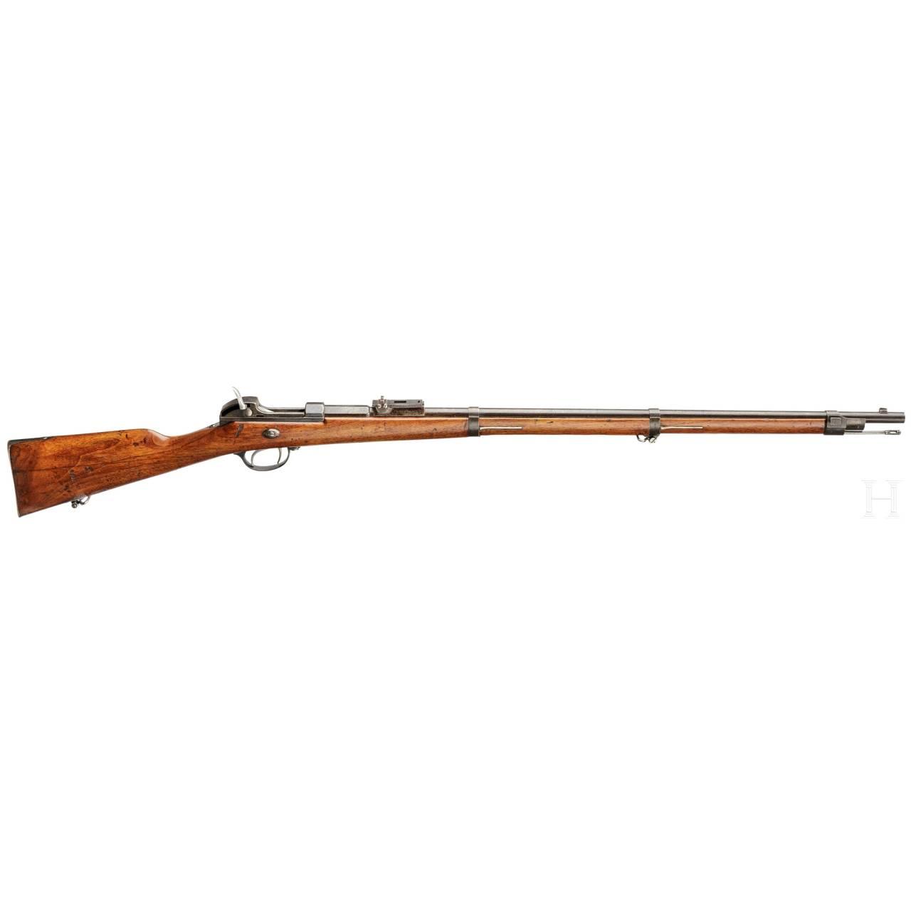 Werdergewehr M1869, OEWG
