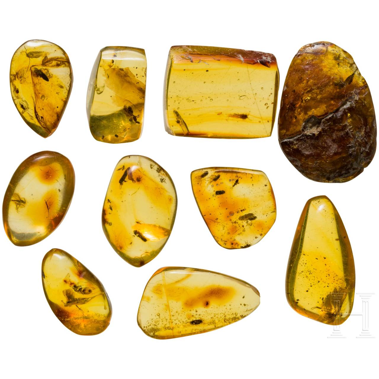 Ten amber stones with insect inclusions
