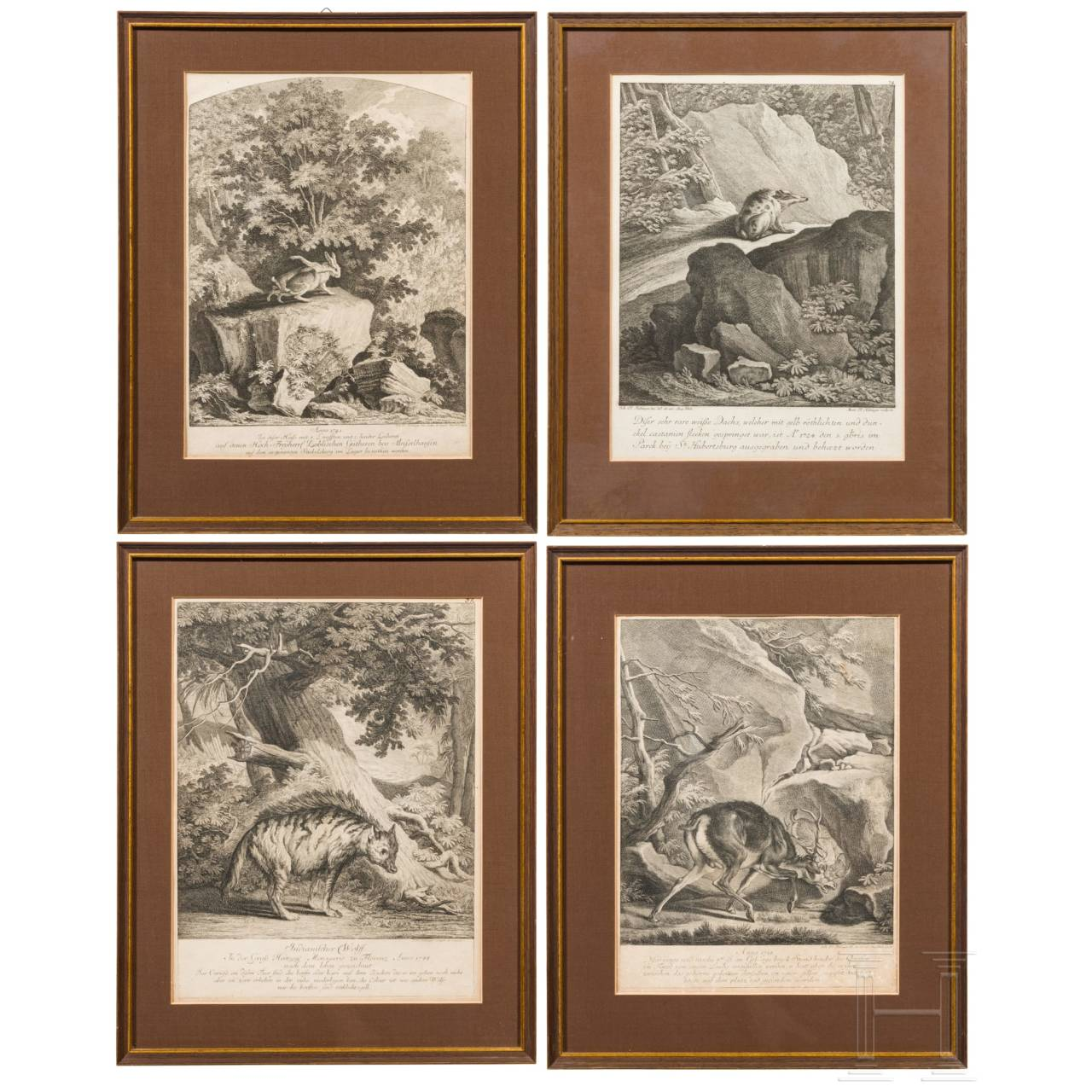 Johann Elias Ridinger, four framed copper engravings showing wild animals, Augsburg, ca. 1760