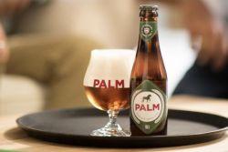 Palm nieuw.001