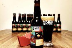 Bird captain blackbird nieuw