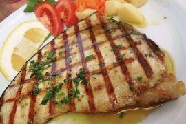 Han hidalgo swordfish klein